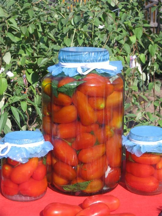 Малосольные помидоры на зиму 5