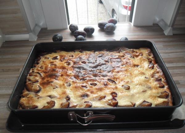 Сливовий пиріг (з сирного тіста зі сметаною заливкою)